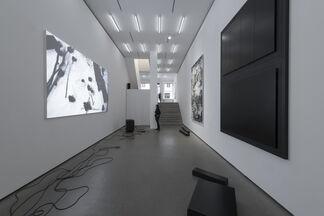 Yehudit Sasportas: Vertical Swamp - Raw Material, installation view