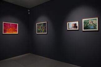 Sarah Biggs: Further afield, installation view