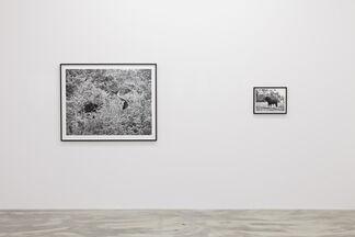 Ulrich Gebert – UR, installation view