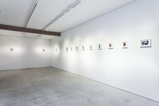 Pareidolia, installation view