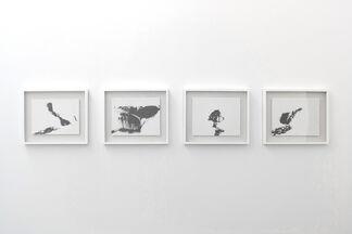 Emulating Nature, installation view