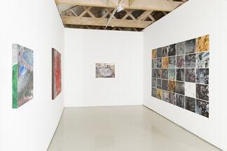 Jessica Webster: Wisteria, installation view