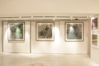 Unabating Spring by Hong Zhu An, installation view