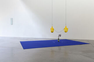 Listen to the stones, think like a mountain, installation view