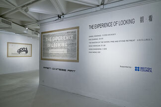 The Experience of Looking, installation view