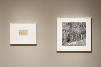Lee Friedlander & Pierre Bonnard: Photographs & Drawings, installation view