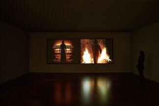 Bill Viola, installation view