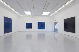 Omnipresent, installation view