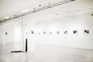 Honeymoon Rehearsal, installation view