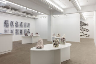 Tie Me to the Mast, installation view