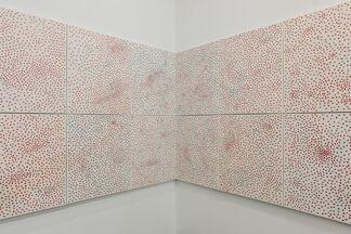 Flesh.Body.Walls, installation view