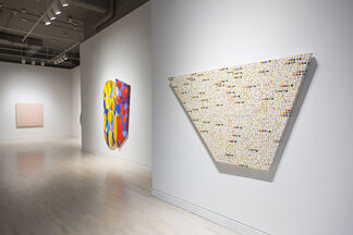 Shape Paintings, installation view