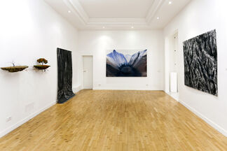 My Roots Can Hear the Leaves Grow, installation view