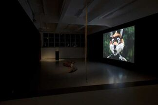 Andréhn-Schiptjenko at Moving Image London, installation view