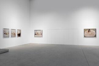 Lalla Essaydi: Still in Progress, installation view