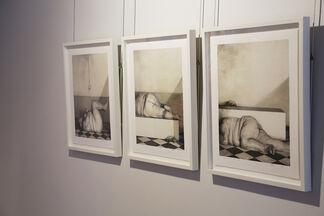 FU Lei: Dreams of Desire, installation view
