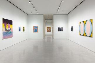 Pictography, installation view