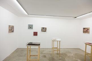 RODRIGO TORRES | Trompe-l'oeil, installation view
