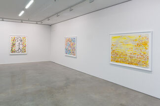 The Other I, installation view