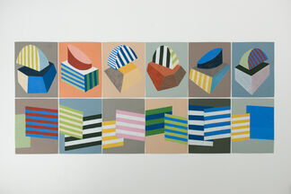 Plants with Stripes, installation view