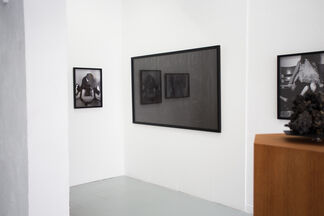 Silver - Encounters with Bâ - Ljungdalh/Bergson, installation view