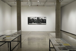 Lorraine O'Grady: Where Margins Become Centers, installation view