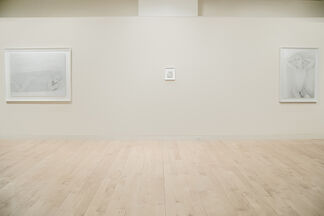 Sebastiaan Bremer: Ave Maria, installation view