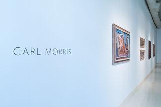 Carl Morris: Decades, installation view