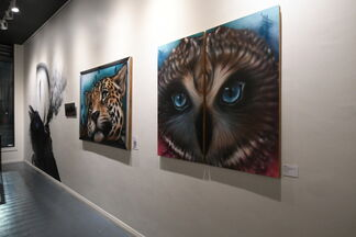 Dytch66 Solo Show, installation view