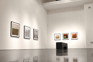 """Dianne Bos - """"The Sleeping Green"""", installation view"""