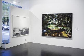 Steinar Christensen - Still Lifes, installation view