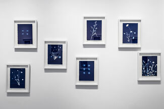 Pipo Nguyen-duy   AnOther Expedition: Monet's Garden, installation view