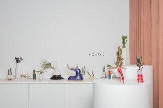 Monty J, installation view