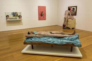 Pablo Suárez. Narciso Plebeyo, installation view