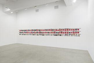 Rivane Neuenschwander: Tropics: Damned, Orgasmic and Devoted, installation view