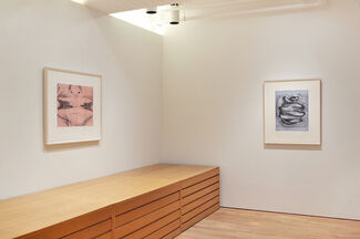 Out of Their Hands: Bruce Nauman and Susan Rothenberg at Gemini G.E.L., installation view