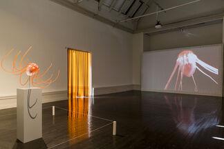 Tue Greenfort Eats Den Frie, installation view