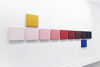 Alejandro Puente: A Shifting of the Gaze, installation view