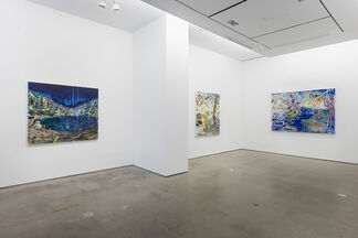 Melanie Daniel: Lotus Eaters, installation view