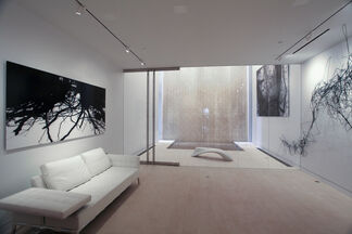 JINHONG KIM: COINCIDENCE, installation view