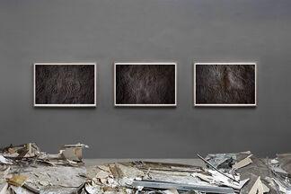 Asunción Molinos Gordo - Description de L'Egypte, installation view