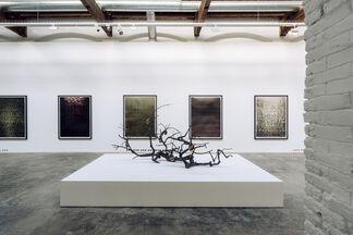 Revelaciones, installation view