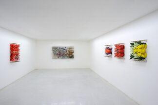 Jacob Hashimoto - 16.05.2015, installation view