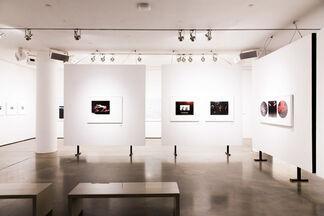 Michel Comte x Milk : A Collaboration 1996 - 2016, installation view
