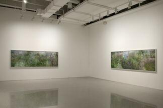 Kim Boske - I go walking in your landscape, installation view