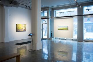 Julie Desmarais - Recueil de paysages, installation view