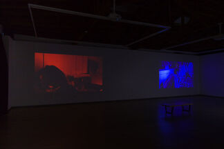 Not/Normal, installation view