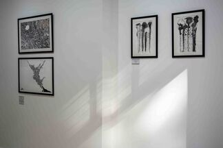 Tying Secrets to Poetry - Marian Fannon Christian, installation view