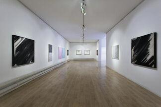 Tetrachromacy: The Beauty of Iridescence, installation view