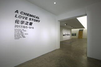 A Chemical Love Story, installation view